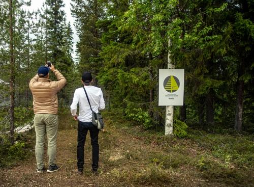 Arboreal Trädhöjd är nu uppdaterad