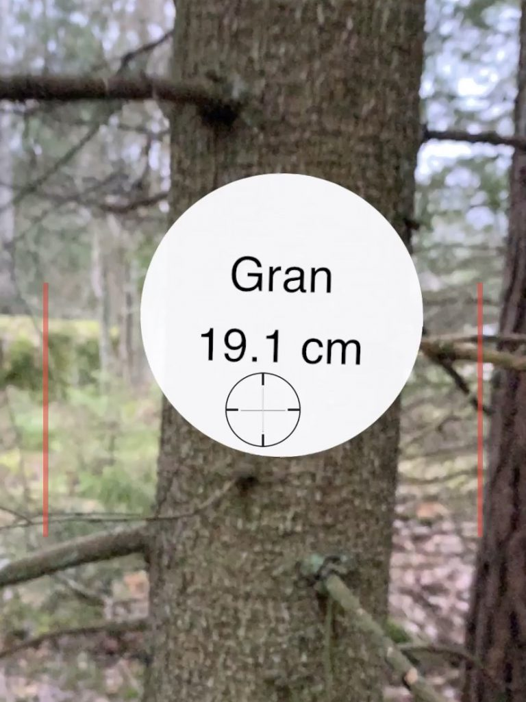 New method to measure a tree
